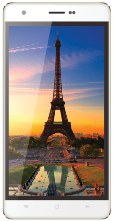 BQ 5004 PARIS Gold